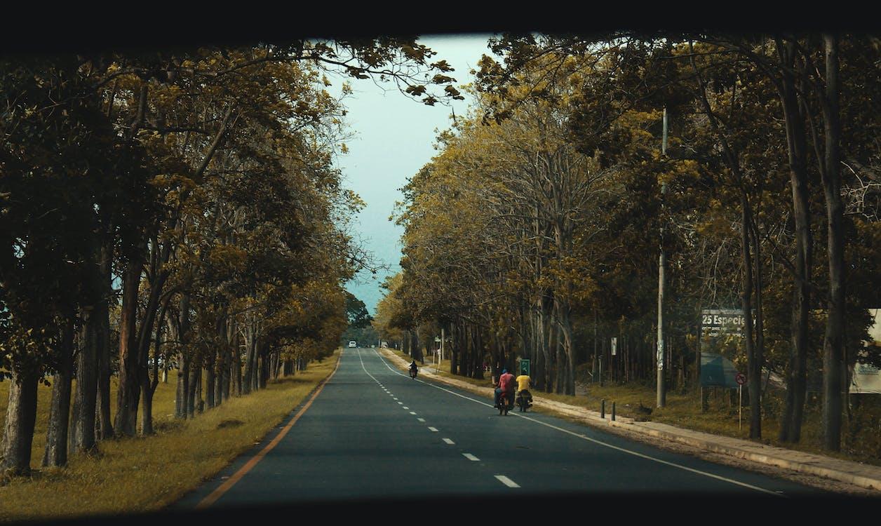 คลังภาพถ่ายฟรี ของ sharefilm, การท่องเที่ยว, การเดินทาง
