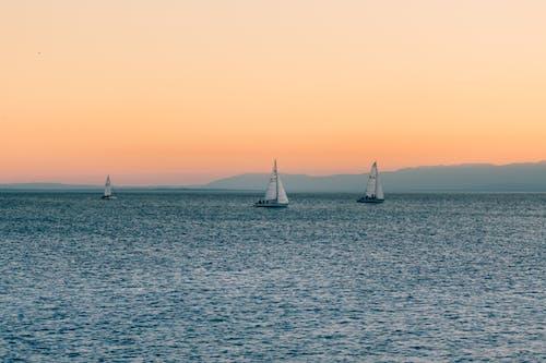 帆船, 日出, 日落, 水 的 免费素材照片