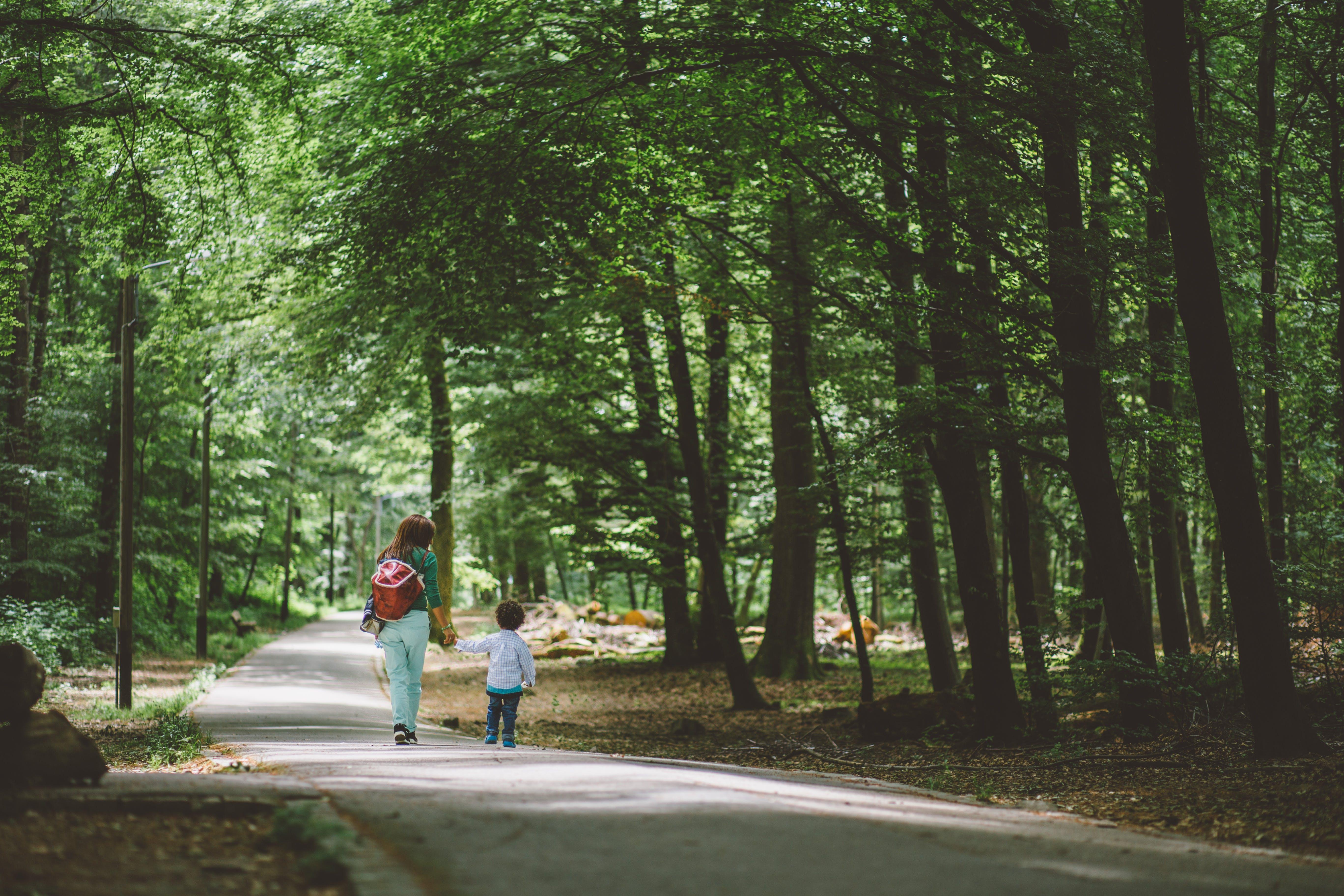 Woman Wearing Green Shirt and Red Bag Holding Children Wearing White Long Sleeve Shirt Walking