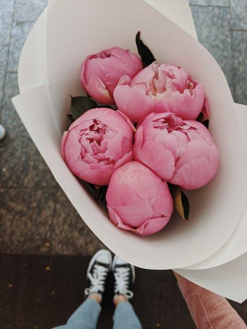 Quatro Flores De Rosas