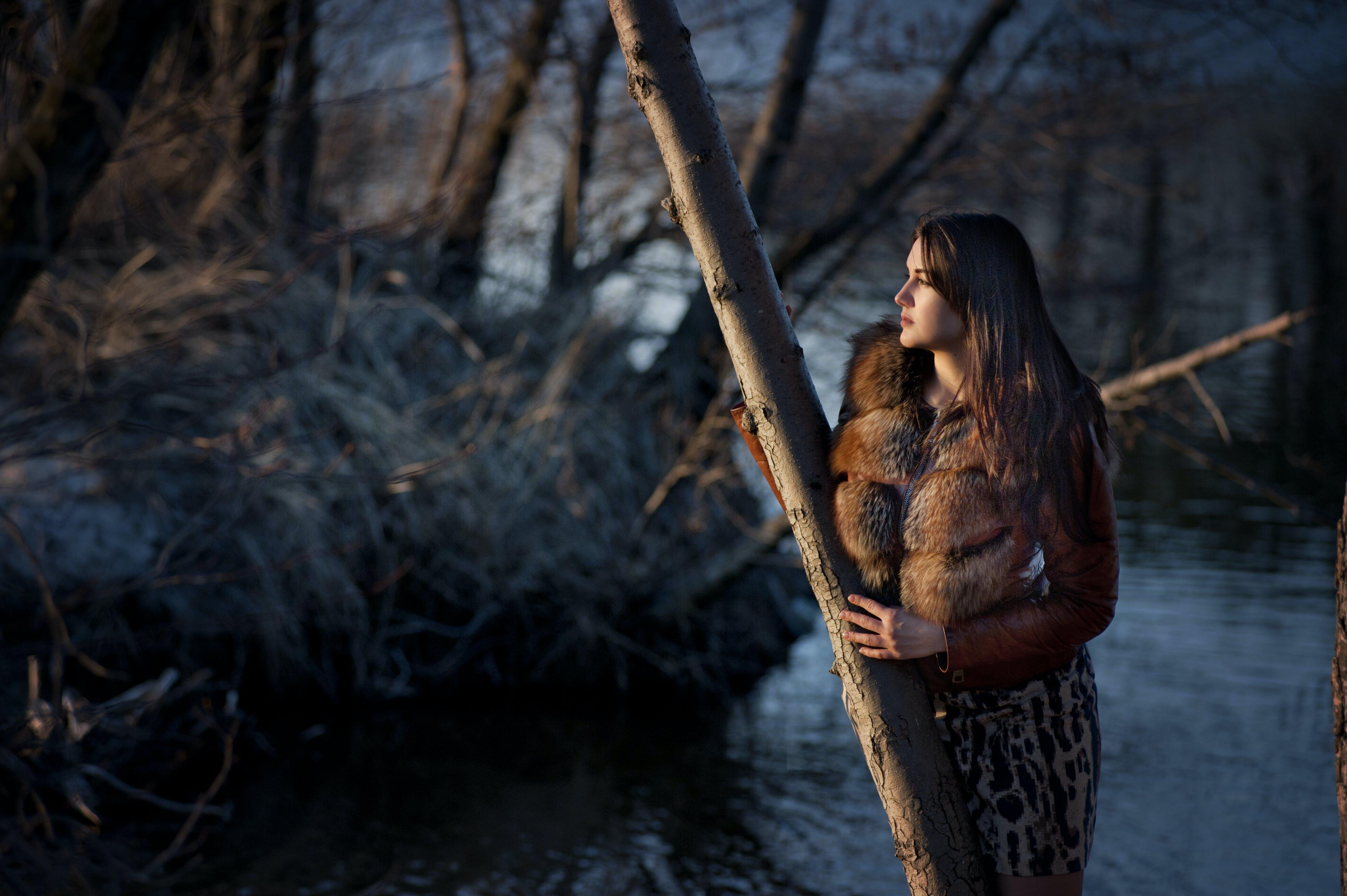 Kostenloses Stock Foto zu attraktiv, bäume, baumstämme, betrübt