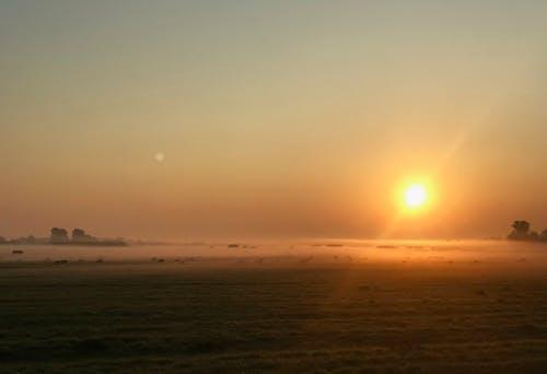 Základová fotografie zdarma na téma hřiště, mlha, oranžová, západ slunce
