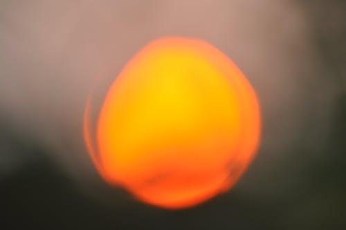 Základová fotografie zdarma na téma koule, mísa, oranžová, ostré