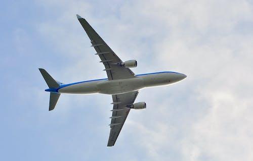 Základová fotografie zdarma na téma bílá, klm, letadlo, létání