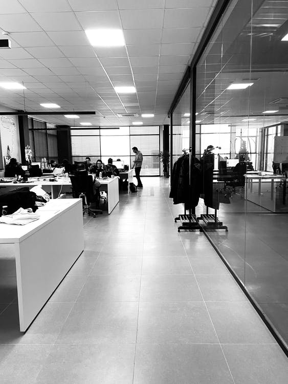 Black and white of anonymous employees working together in modern office with glass walls