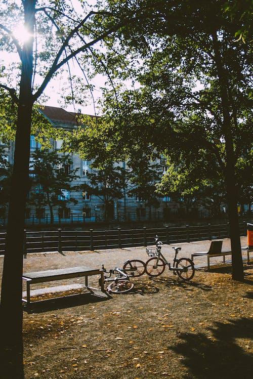 Foto d'estoc gratuïta de #berlin #travelphotography #vivisphoto
