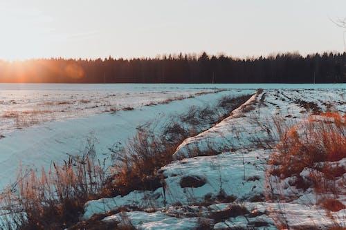 Základová fotografie zdarma na téma fotografie přírody, hřiště, idylický, klidný