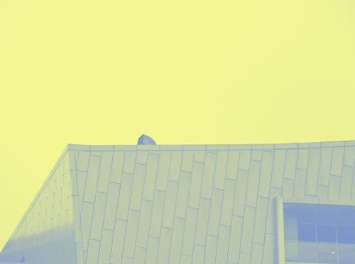 Free stock photo of building, Dual tone, dualtone, faded