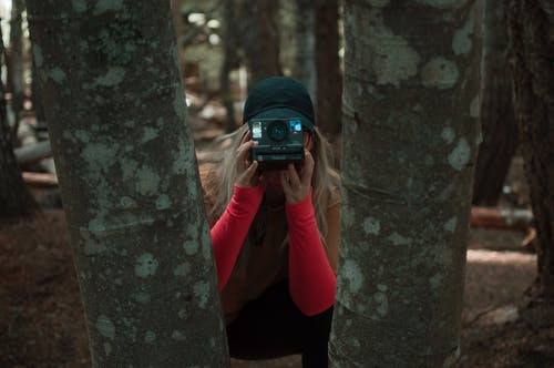 Free stock photo of action, adventure, adventurer, adventurers
