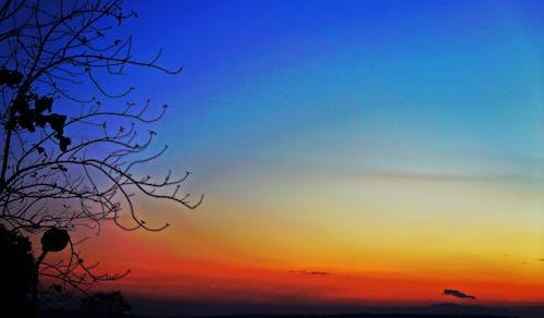 Free stock photo of bliss, blue, orange