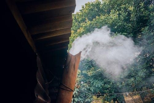 濃い緑色, 火, 火災の無料の写真素材