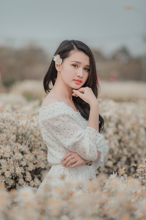 con gái, hoa cúc trắng, mỉm cười
