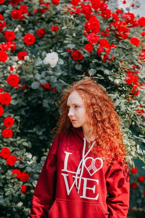 꽃, 식물군, 아름다운, 아름다움의 무료 스톡 사진