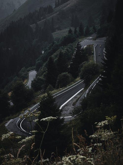 Free stock photo of background, bike, bike lane