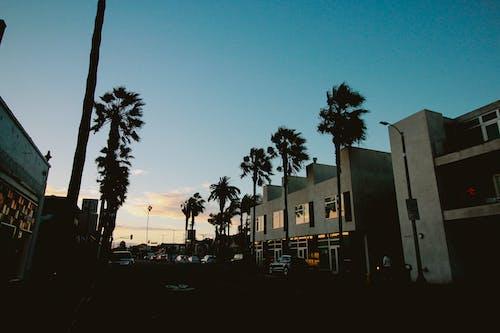 Foto stok gratis Los Angeles, matahari terbenam