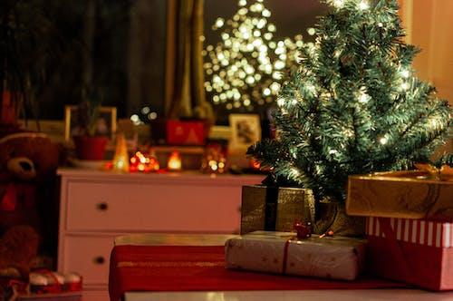 Imagine de stoc gratuită din arbore, beculețe, cadouri, Crăciun