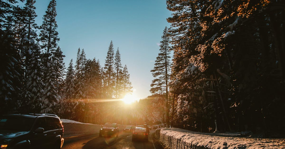 Free stock photo of ray of sunshine, road, road trip