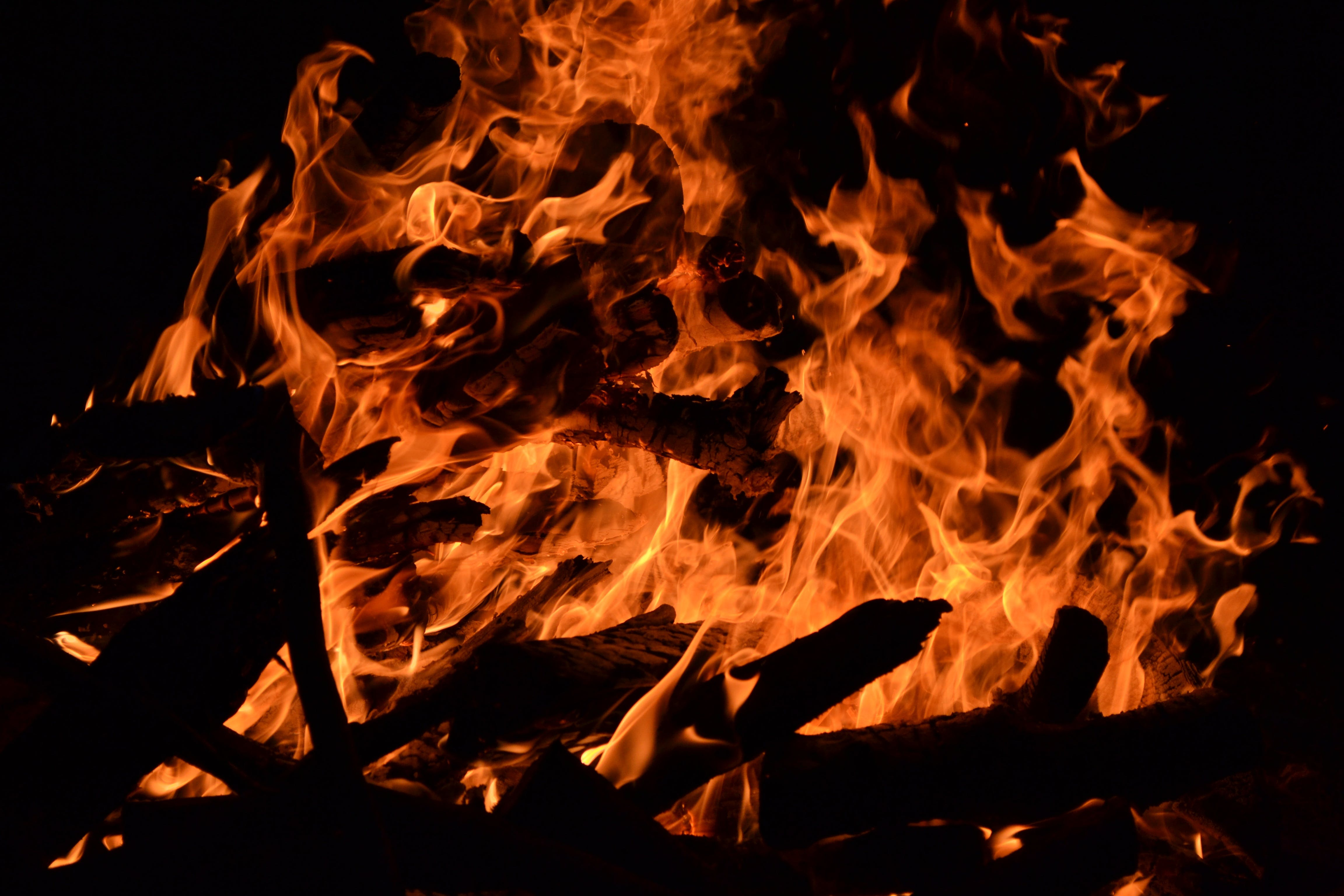 Free stock photo of burning, fire, flame, heat