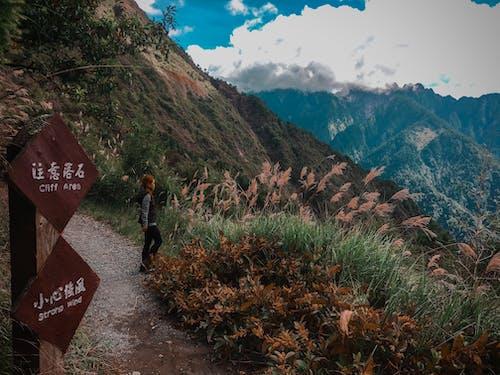 Free stock photo of climb, explore, hike, jade mountain