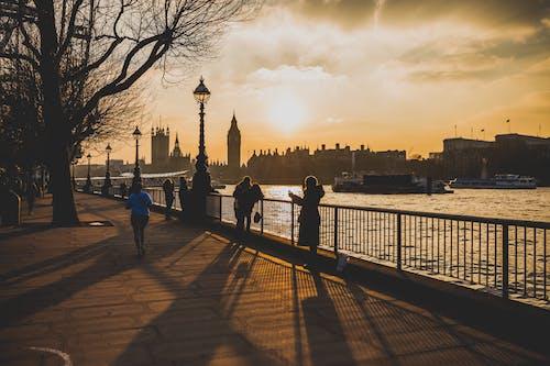 Δωρεάν στοκ φωτογραφιών με westminster, Ανατολή ηλίου, Άνθρωποι, δέντρο