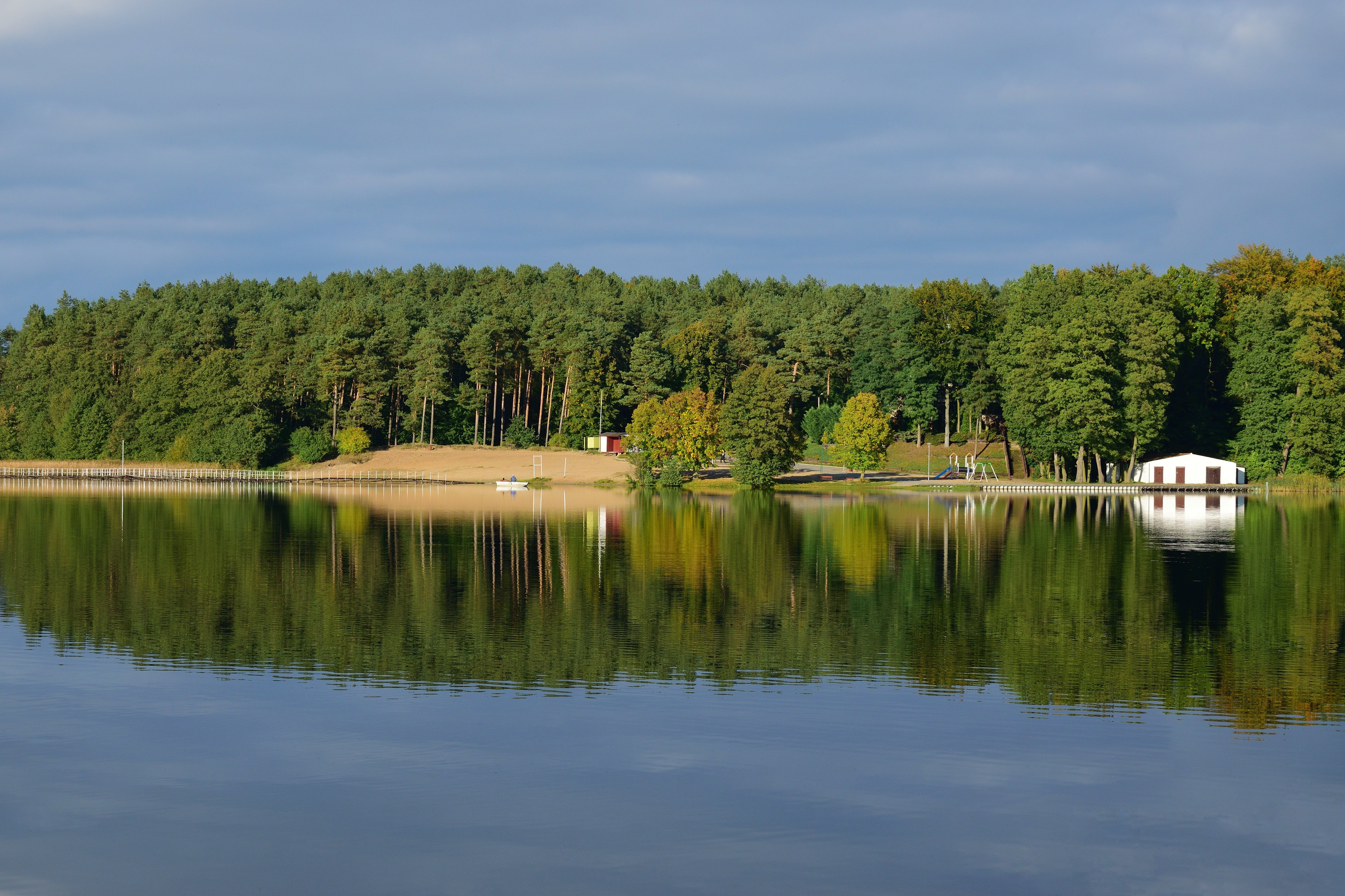 Landscape Photography of Trees and Body of Water