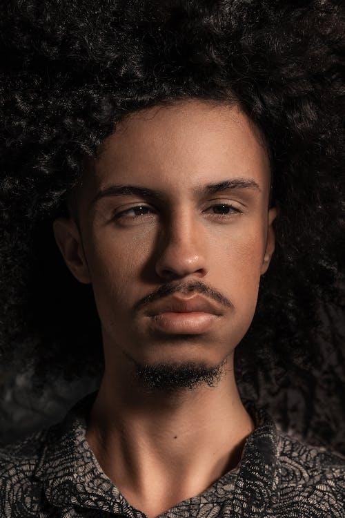Kostenloses Stock Foto zu afro, afro-haar, augen, bart