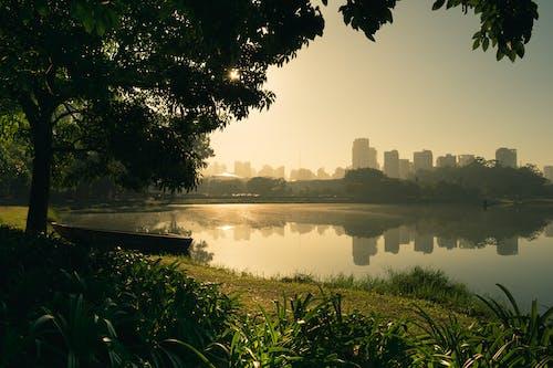 Бесплатное стоковое фото с вода, деревья, дневной свет, закат