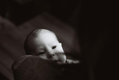 Fotobanka sbezplatnými fotkami na tému bábätko, chlapček, deti, malé dieťa