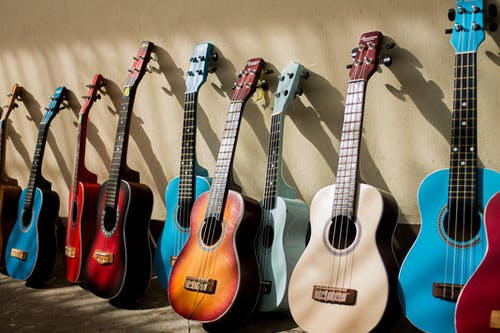 Photo Of Assorted Acoustic Guitars
