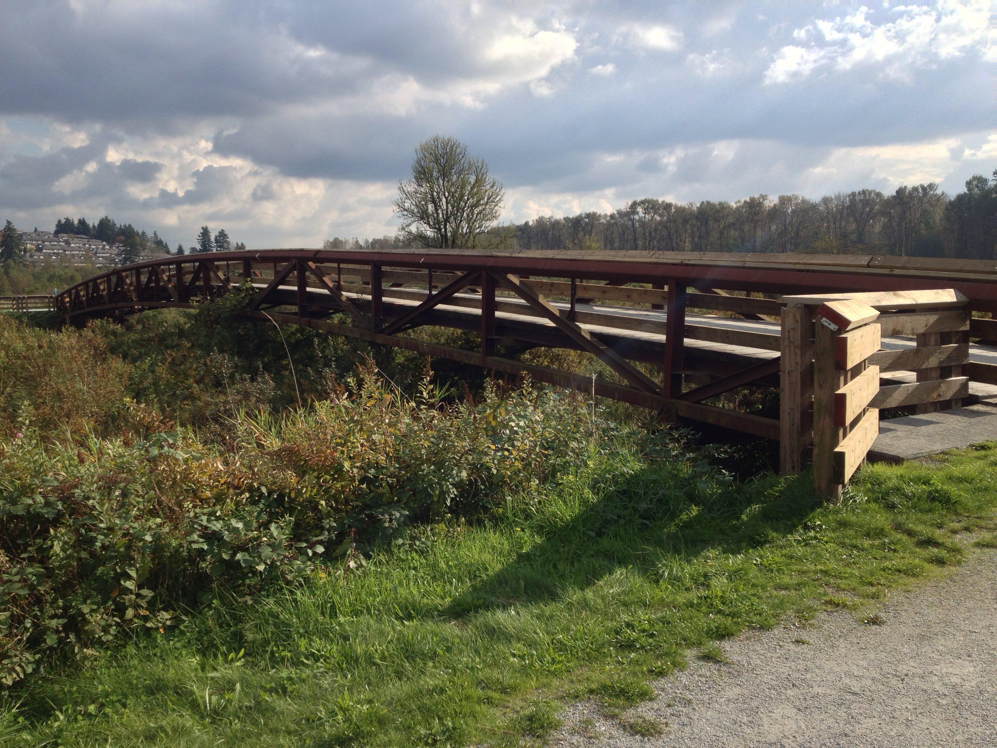 Free stock photo of bridge, british columbia, canada, summer