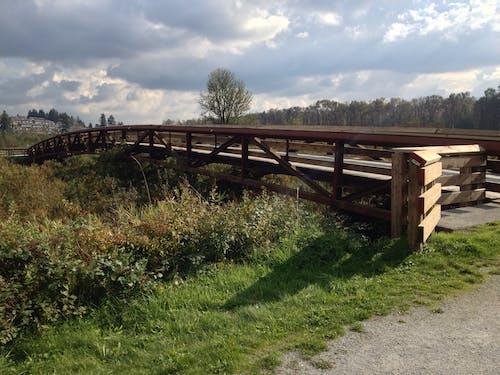 不列颠哥伦比亚省, 加拿大, 夏天, 橋 的 免费素材照片