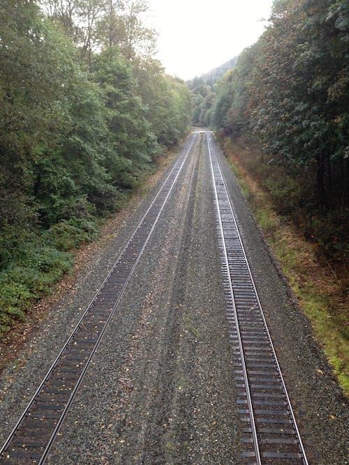 夏天, 樹木, 火車鐵軌, 視角 的 免费素材照片