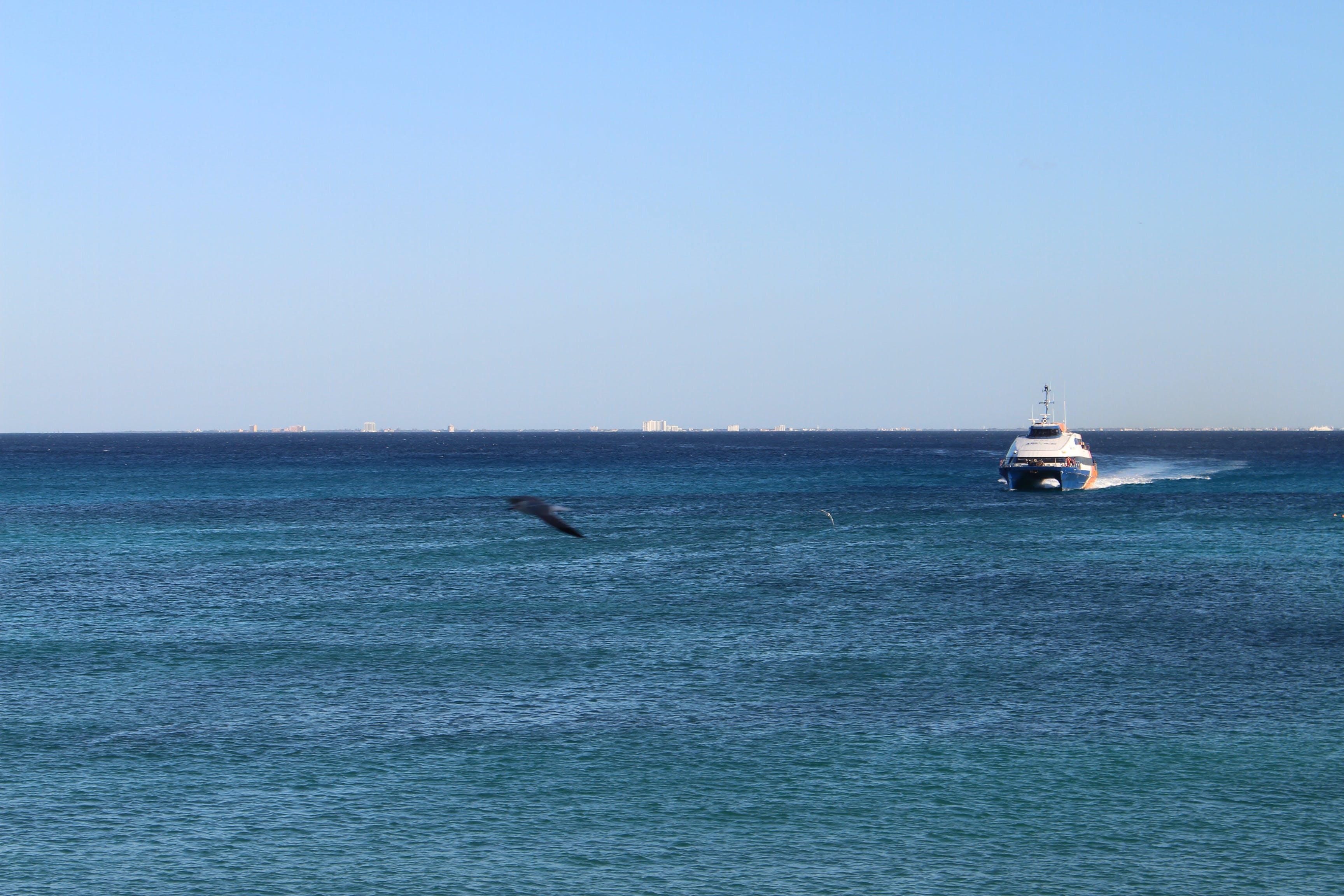 Free stock photo of boat, ocean, sea
