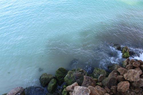 Photos gratuites de eau, mer, océan, plage