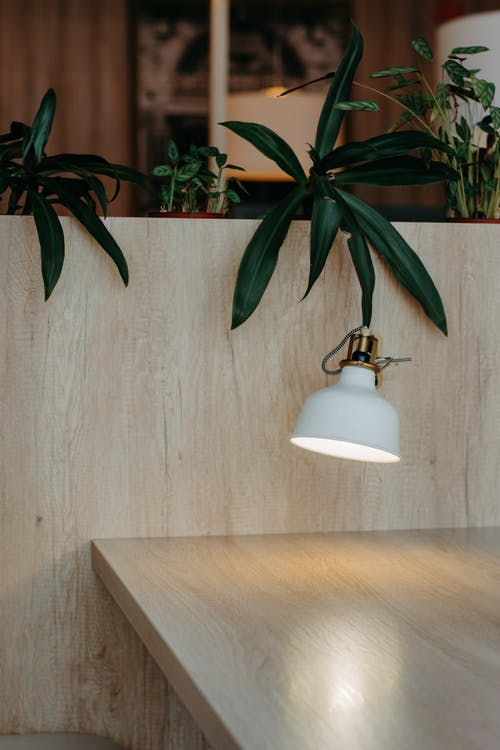 Immagine gratuita di arredamento interno, decorazione d'interni, impianti, in legno