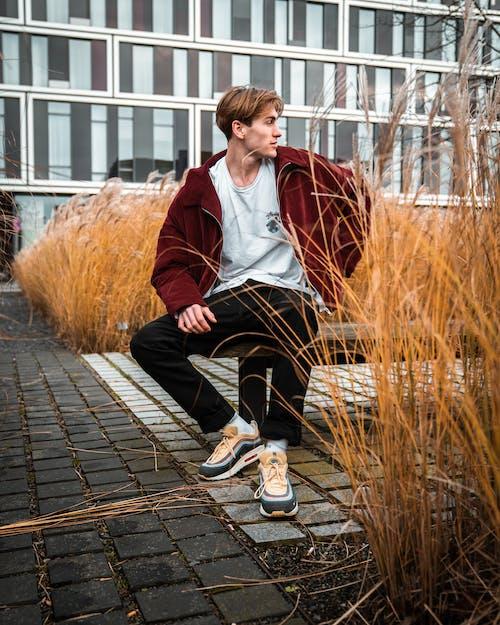乾草, 人, 休閒裝, 坐 的 免費圖庫相片