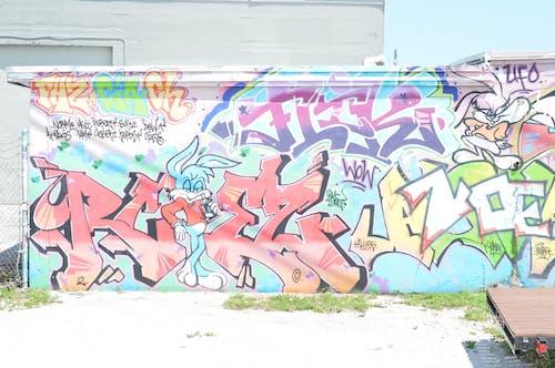 Free stock photo of art, broward, colors