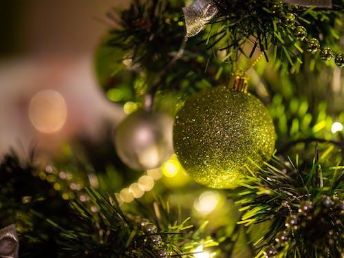 Ilmainen kuvapankkikuva tunnisteilla bokeh, joulu, keskittyminen, kimalle