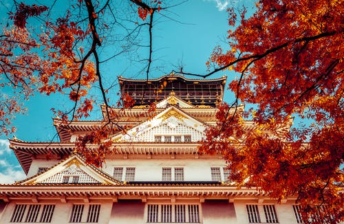 アジア建築, ローアングルショット, 中国建築, 伝統的の無料の写真素材