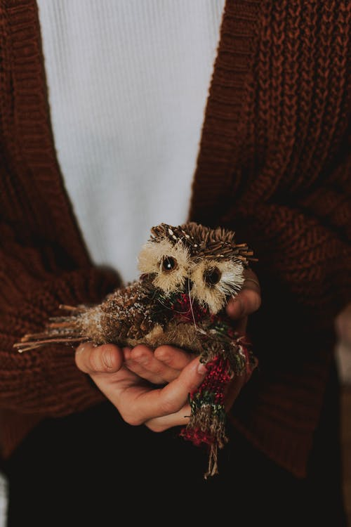 Person's Hand Holding Owl Decor