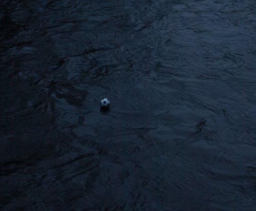 Free stock photo of ball, river, water