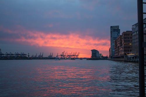 คลังภาพถ่ายฟรี ของ ตะวันลับฟ้า, ท่าเรือ, นกกระเรียน, น้ำ
