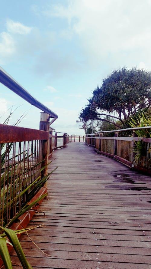 Free stock photo of beach, boardwalk, timber