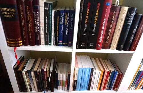Free stock photo of book shelves, books, language