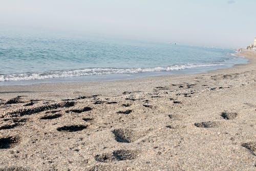 Immagine gratuita di ciottoli, mare, sabbia, spiagge