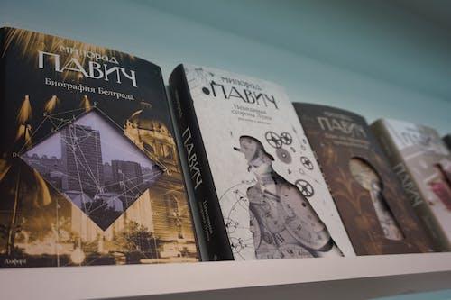 Free stock photo of book shelves, books, pavic