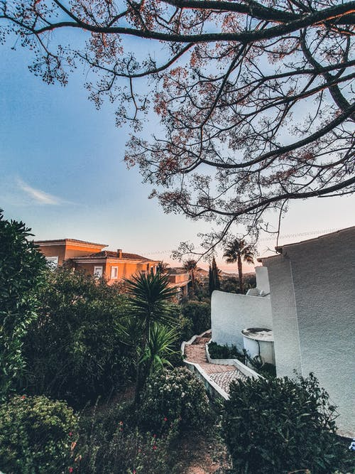 White Concrete House Near Green Trees Under Blue Sky