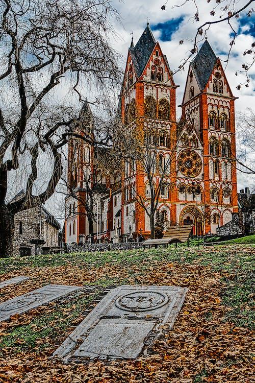 Gratis lagerfoto af appelsin, gammel bygning, george, goth