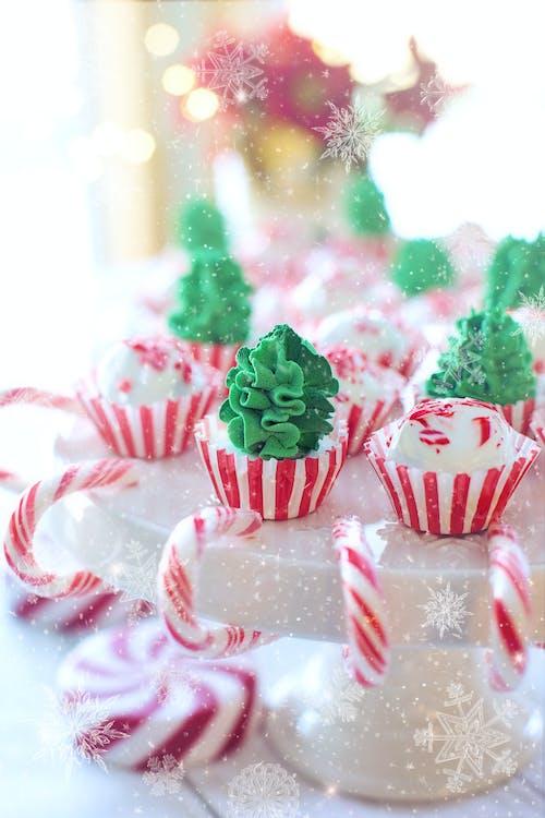 Gratis lagerfoto af fejre, fejring, festlig, jul