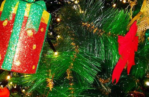 Foto profissional grátis de árvore de Natal, decorações de Natal, enfeites de Natal